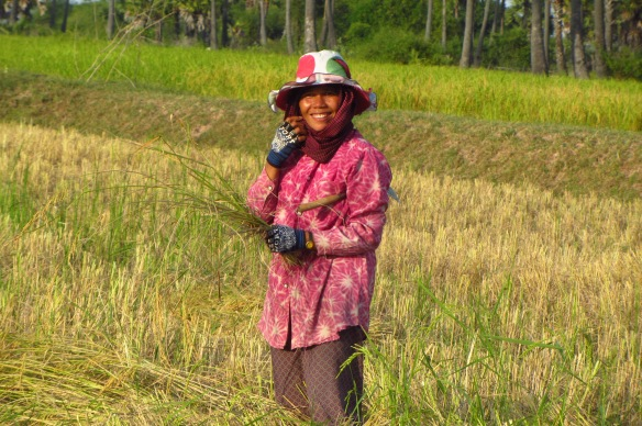 A woman tending to the rice paddies in Kampong Speu. Photo taken by Samnang, 12, from APCA.